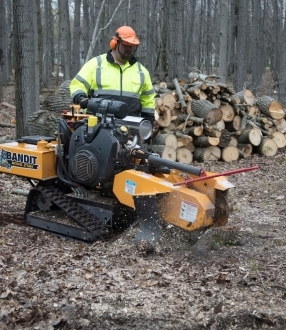 Stump Grinder Hire – Bandit ZT1844
