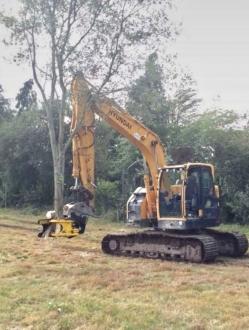 TMK  300 TREE SHEAR