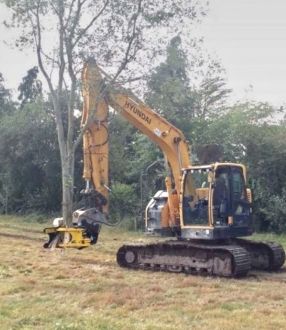 Tree Shear Hire