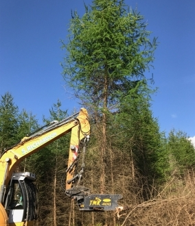 Tree Shear Hire – TMK 400